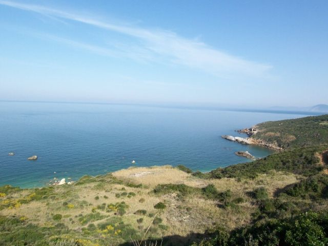 Olive grove with Aegean Sea view - Property Pelion