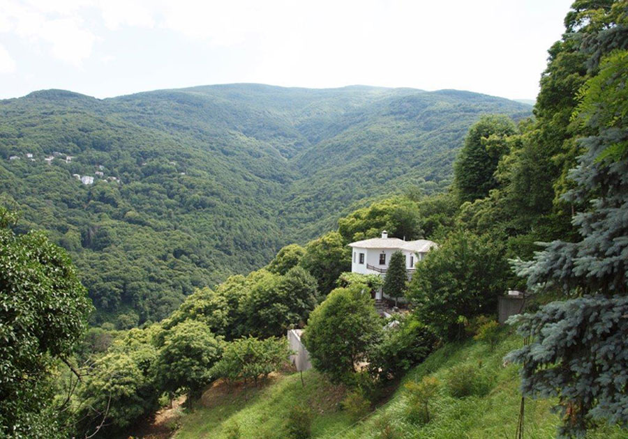 Sea & Forest View comfortable villa - Property Pelion