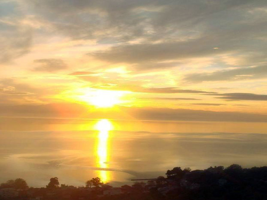 Sea Sunset, Olive grove in Afissos - Property Pelion