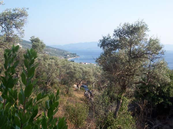 Spectacular Sea view buildable plot  - Property Pelion