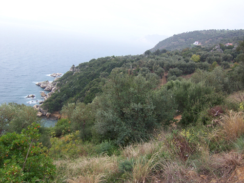 Seafront land with panoramic Aegean view - Property Pelion