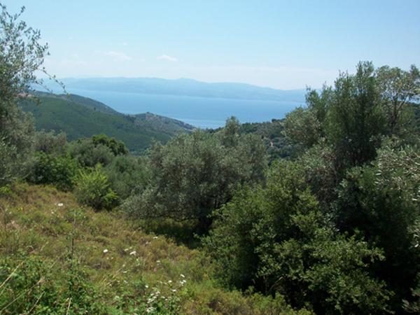 Buildable land plot with stunning sea view Property - Real Estate Greece