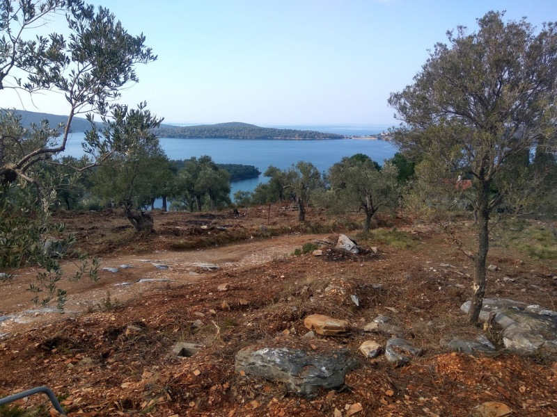 Olive grove with sea views close to the beach - Property Pelion