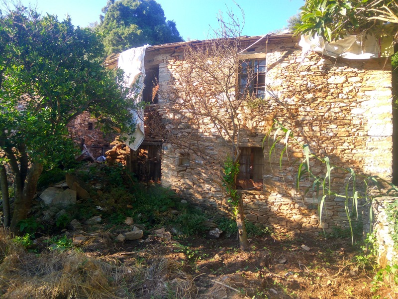 Old stone ruin in a lush green location  - Property Pelion