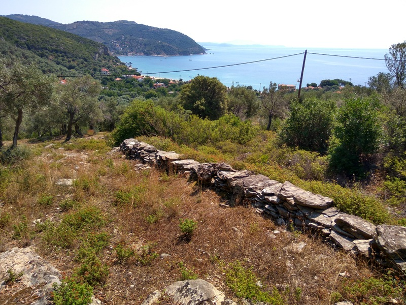 Buildable land with sea view in Mikro, South Pelion - Property Pelion
