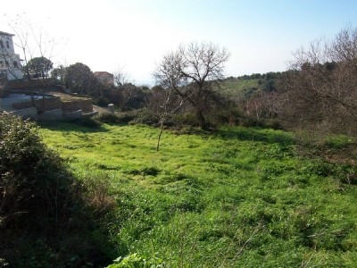 Lafkos Village Sea View Plot - Property Pelion
