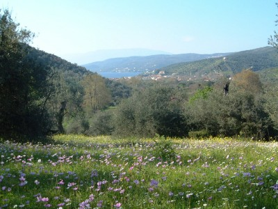 Milina Retreat two large plots - Property Pelion