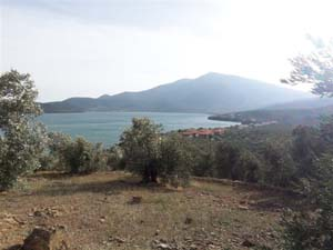 Boating paradise, gulf town olive grove, Nies - Property Pelion