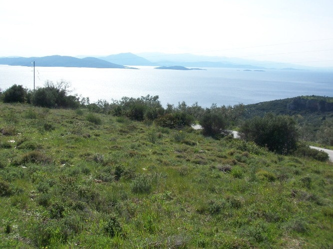 Buildable land with panoramic sea view  - Property Pelion