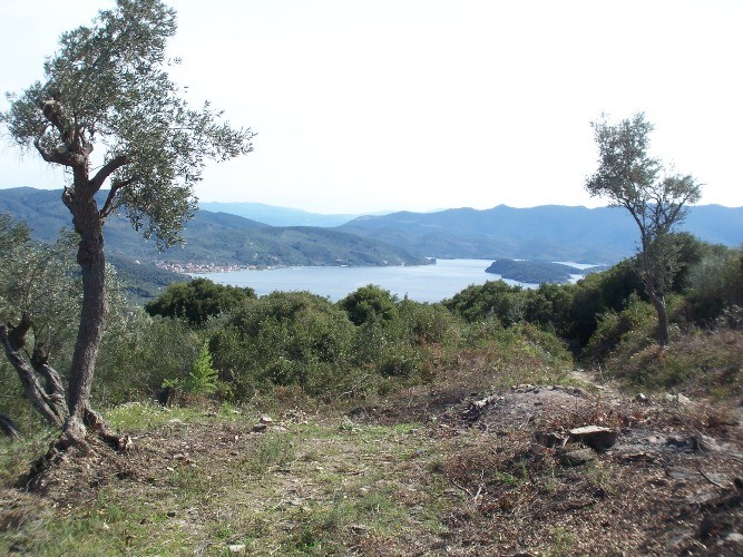 Buildable land with sea views near Metohi  - Property Pelion