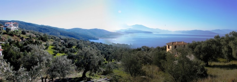 Buildable olive grove with spectacular sea view - Property Pelion