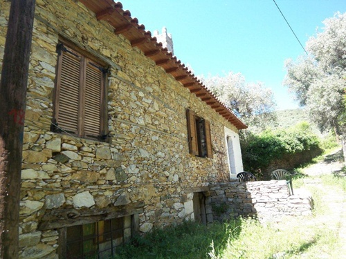 Old olive press in the middle of olive groves - Property Pelion