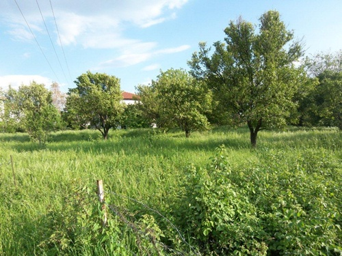 Quiet building plot, near the sea, in a Volos suburb - Property Pelion