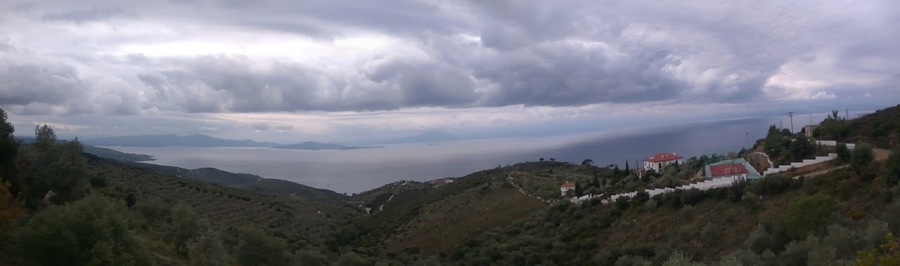 Olive grove with panoramic sea view