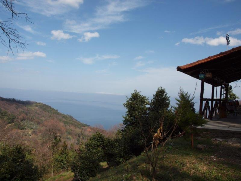 Aegean view deep forest refuge