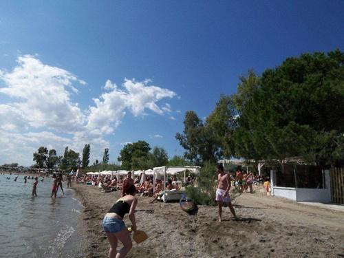 Beach Party club house